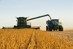a combine harvester unloads soybeans into a grain wagon on the go during the harvest, near Niverville, Manitoba, Canada