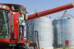 a farmgirl in front of a tractor and grain wagon during the harvest, near Dugald, Manitoba, Canada
