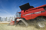 a combine harvests canola next to a farm yard, near Dugald, Manitoba, Canada