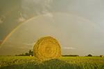 alfalfa field with round bale, rainbow in the background, near Landmark, Manitoba, Canada