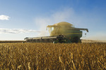 soybean harvest, near Niverville, Manitoba, Canada