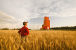 a man in a maturing spring wheat field with grain elevator in the background, Carey, Manitoba, Canada