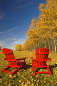 two chairs at the edge of a field with aspen in autumn colours in the background, Birds Hill Provincial Park, Manitoba, Canada