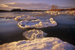 winter along the Red River, Manitoba, Canada