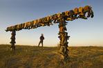 """The Boot Rack"", Great Saskatchewan Sandhills, near Sceptre, Saskatchewan, Canada"