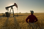 a man looks out over a harvest ready wheat field with an oil pumpjack in the background, near Sinclair, Manitoba, Canada