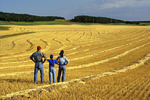 family looking out over a swather barley field, Tiger Hills near Treherne, Manitoba, Canada