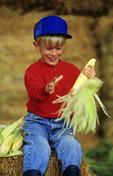 boy husking corn, near Ponteix, Saskatchewan, Canada