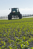 a high clearance sprayer gives a chemical application of herbicide to early growth corn, near Niverville, Manitoba, Canada