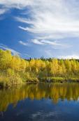autumn colours, Northern saskatchewan