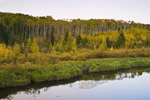 stream with autumn colours in the background, Prince Albert National Park, Saskatchewan, Canada