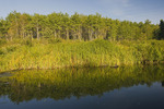 Jackfish Creek, Riding Mountain National Park, Manitoba, Canada