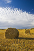 round straw bales and sky with  clouds, near Riding Mountain, Manitoba,  Canada