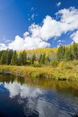 autumn colours, Duck Mountain Provincial Park, Manitoba, Canada