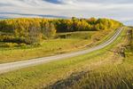 country road through farmland, near Riding Mountain, Manitoba, Canada