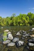river near Nestor Falls,, Northwestern Ontario, Canada