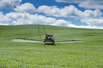a high clearance sprayer applies a chemical application of fungicide to a flax field, Tiger Hills, Manitoba, Canada