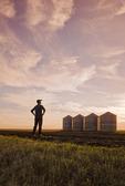 a farmer looks out over grain storage bins at sunset,near Carey, Manitoba, Canada