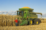 a man examines feed/grain corn next to a combine filled with the harvested crop  near Niverville, Manitoba, Canada