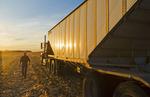 a farmer walks to his farm truck during the feed/grain corn harvest, near Niverville, Manitoba, Canada