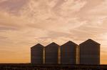 grain storage bins at sunset, near Carey,  Manitoba, Canada