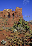Coffee Pot Rock in Sedona