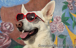 Dog wearing heart-shaped sunglasses