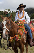 Rider before the start of the 35th Waimea Paniolo Parade