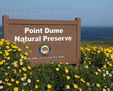 Wildflowers frame sign at Point Dume