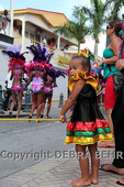 Spectators watch the Grand Parade at the St. Maarten Carnival 2011