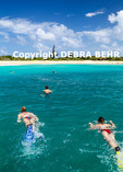 Family explores sea off Tintamarre Island during boat trip from St. Maarten