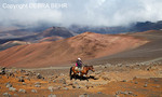 Horseback rider explores the Sliding Sands Trail at Haleakala National Park