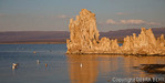 Golden light illuminates tufa at Mono Lake