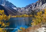 Fishing boat cruises Convict Lake in autumn
