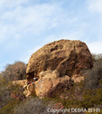 Hiker relaxes at Skull Rock off the Temescal Ridge Trail