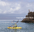 Kayaker, stand up paddleboarders, snorkelers and man jumping off Black Rock in Maui