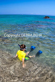 Boy snorkeling at Anaehoomalu Bay
