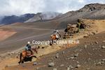 Horseback riders on the Sliding Sands Trail at Haleakala National Park on Maui