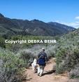 Hiker and dog walk down  the ocean view trail at Zuma Canyon