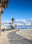 Bike path in Venice, California