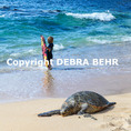 Hawaiian green sea turtle rests on shore as boy with boogie board enjoys sea at Hookipa Beach Park