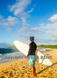 Surfer looks at Hawaiian monk seal resting at Hookipa Beach