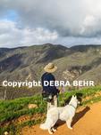 Hiker and dog on the Zuma Ridge Trail in Malibu