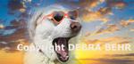 White German Shepherd wearing sunglasses (photo composite)
