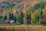Barn  fall color  Northern Forest