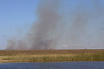 controlled burn on Nantucket conservation land to maintain rare habitat of unique heathlands and grasslands created by colonists