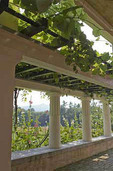 Mt. Ascutney seen through the pergola, at Saint-Gaudens home