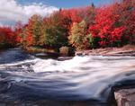 Warnertown Falls in autumn