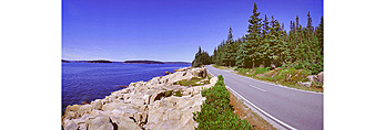 Schoodic Peninsula Road