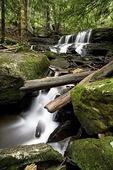 Logan Falls